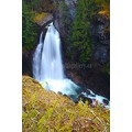Lady Falls in Strathcona Park