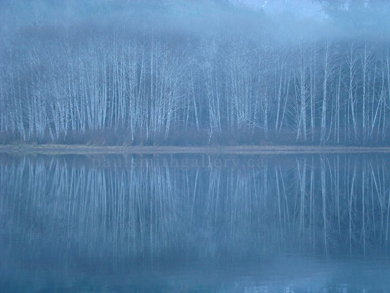 Foggy Malispina Lake Reflection on Vancouver Island