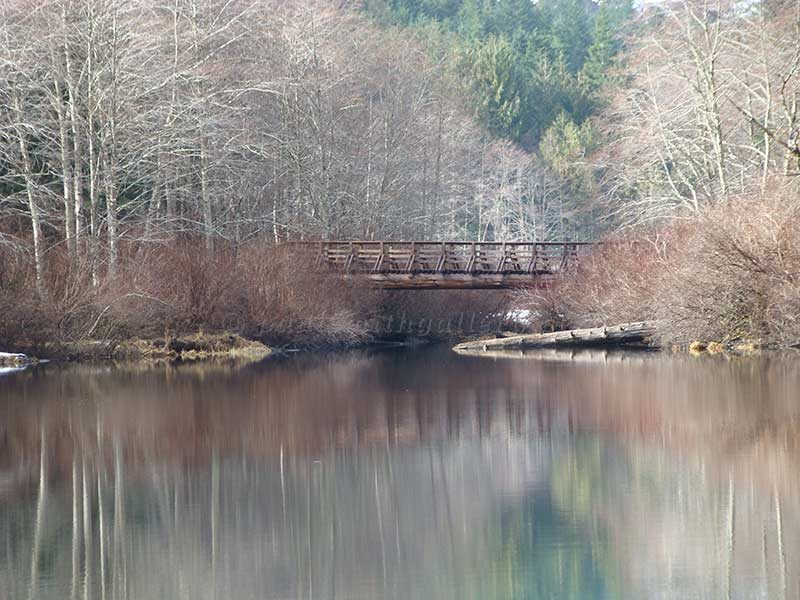 Crest Mountain Trail Bridge Crossing Drum Lake