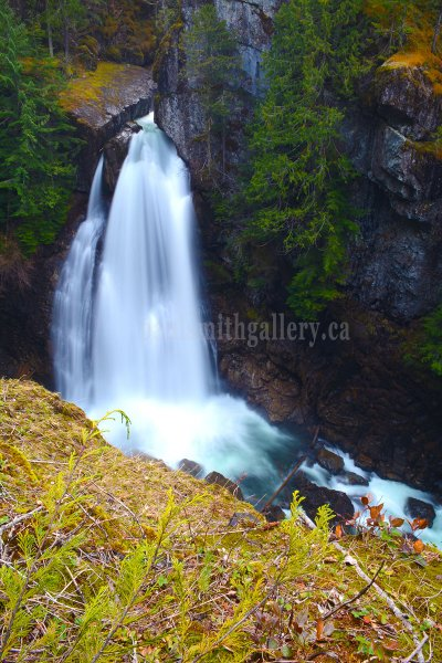 Lady Falls in Strathcona Park on Vancouver Island